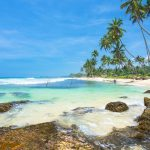 Srilanka Tour (6 day,5 night | Couple Package)